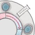 2-AXIS-Assess_flattened